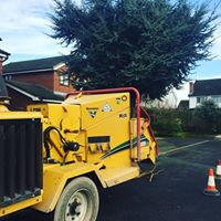 Tree removal equipment Heaton Moor