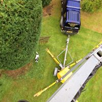 Removing Hazardous Trees Manchester