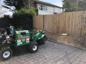 Stump removal Stockport