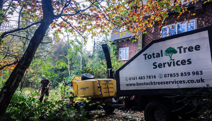 Tree Surgeon Wilmslow Cheshire