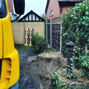 Stockport Tree Surgeons